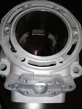 Polaris 900cc Fusion IQ Cylinder Cast # 3021576 $125 CORE REFUND!