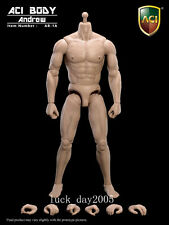 ACI Toys AB-1A Muscular Body–Andrew(Caucasian) 1/6