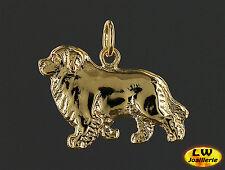 Pendentif Chien TERRE NEUVE - Pendant NEWFOUNDLAND DOG