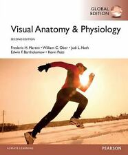 Visual Anatomy & Physiology 2nd by Martini, Ober, Neth 2E (Global Edition)