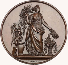 FRANCE Rhone HORTICULTURE Medal 1800-1900AD 50mm French BEAUTIFUL i43602