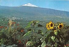 BG27491 tenerife valle de la orotava y teide   spain