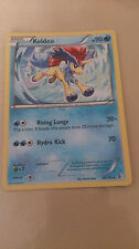 Keldeo Pokemon Card RARE [BOUNDARIES CROSSED]