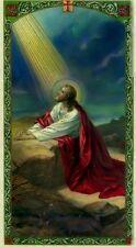 What I Need Catholic Laminated Prayer Card - JimsStoreUSA HC9-498E