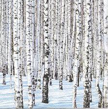 3 Servietten Napkins Winterlandschaft mit Birkenwald Bäume im Schnee #260
