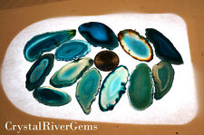 "12 pc Randome Lot Teal #000 Brazil Geode Agate Slices Wholesale 1""-1.5"" L"