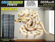 Removeable Wall Decal Snake Ball Python Cold Blooded Prints Sticker 005RenR