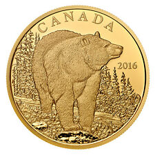 Canada 2016 - $350 Iconic Canadian Animals Bold Black Bear - Pure Gold Coin