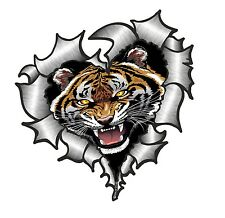 Ripped Torn Metal Look HEART With Roaring Bengal Tiger vinyl car sticker Decal