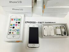 Apple iPhone 5S 16GB 4G LTE (AT&T, Cricket Wireless, H20) GSM Phone - Silver