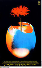 Political OSPAAAL poster.CENTRAL AMERICA Solidarity.Flower from Egg Caribbean.20