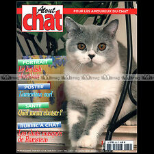 ATOUT CHAT N°282-b ★ RACE BRITISH SHORTHAIR & AMERICAN CURL ★ MASQUES RAMSTEIN