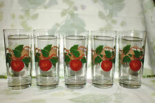FRANCISCAN APPLE GLASS TUMBLERS LOT OF 5    EXC