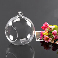 1x 8cm Clear Hanging Glass Flowers Plant Vase Stand Holder Terrarium Container L