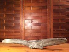 """Beautiful 21"""" Driftwood Terrarium Reptile Taxidermy Aquarium Wood Art Decor"""