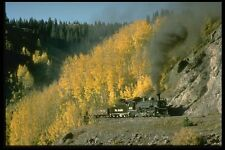 182020 Aspens In The Fall Contrast With No 489 Near Coxo CTSRR A4 Photo Print