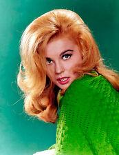 ANN MARGRET 8x10 PHOTO AM17