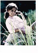 Dawn Wells 8 x 10 Gilligan's Island Authentic Signed Autographed Photo W/ COA