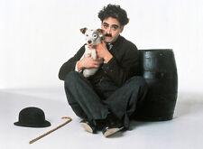 Robert Downey Jr. UNSIGNED photo - D725 - Chaplin
