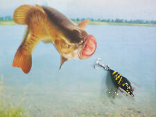 """DOLPHIN , CICADA /LOCUS 2 """" BLACK- LIFE LIKE WITH RED EYE'S, FISHING LURE !"""