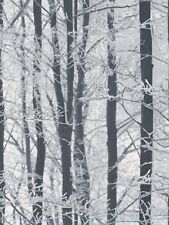 Arthouse Frosted Wood Wallpaper 670200 Forest Glitter Winter Snow Trees Branches
