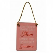 ONLY THING BETTER THAN HAVING YOU AS MUM IS KIDS GRANDMA Mini Metal Sign Plaque