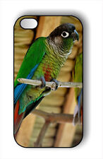 BIRD GREEN CHEEKED CONURE #2 CASE FOR iPHONE 5 , 5s-n3t4