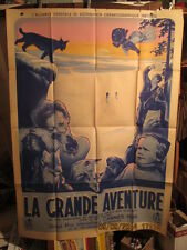 AFFICHE CINEMA DOCUMENTAIRE ANIMAUX GRAND NORD