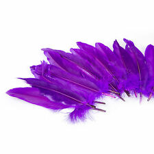 20cm Purple Easter Bonnet School Arts & Crafts Natural Dyed Feathers - 10 Pack