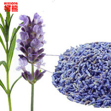 Lavender dried flower tea 50g yangxinanshen sleeping health care good to sleep