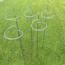 """5 x Tall Heavy Duty Victorian Style Wraparound Plant Supports 5/16"""" Steel Bar"""