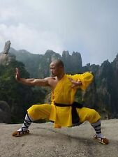 Instant Health the Shaolin Qigong Workou: Instant Fitness: the Shaolin Kung...