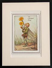 Fárfara Flor de hadas montado 1930s Original impresión Cicely Mary Barker