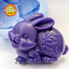 Soap Mold rabbit 2 soap mold silicone molds mold for soap mold Free Shipping