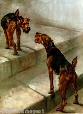 1914 Maud Earl~Two Welsh Terrier Dog Dogs~ New Large Note Cards