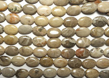"15"" Strand  ""Petoskey""  FOSSIL CORAL 10x14mm Oval Beads"
