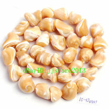 10-12mm Natural Trochus Shell Freeform Shape DIY Gemstone Loose Beads Strand 15""