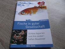 Tierratgeber: Fische in guter Gesellschaft ,schöne Aquarien und ihre zauberhafte