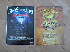 BLACK STONE CHERRY - 2 different lovely colour tour flyers (MINT) AIRBOURNE