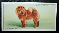 CHOW CHOW      Original 1930's Vintage Coloured Card  VGC
