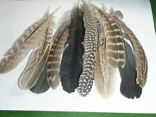 MIXED QUILL FEATHERS. 2NDS. ART/CHILDREN`S CRAFT/VICTORIAN PENS