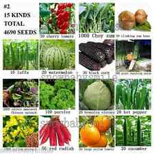 Economy Pack Vegetable Fuit Seeds Emergency Survival Heirloom Lot Plant NON GMO