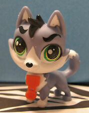 Littlest Pet Shop #3659 MOOSE HATFIELD Timber Wolf Husky Puppy Dog