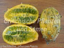 Kiwano* Horngurke* Cucumis metuliferus* lecker*10 Samen