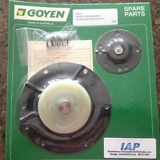 Goyen Valve Repair Kit K4502, M2162, AD3517600