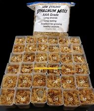 sphagnum moss __NEW ZEALAND__ Grade AAA Long Fiber ORCHIDS 115 g/ 4 oz/ 1-gal