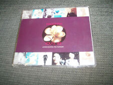 MADONNA - YOU'LL SEE 3 TRACK LIMITED CD SINGLE + 1996 CALENDER CARDS RARE