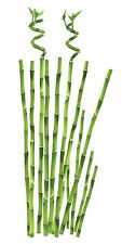 Bamboo Stalk Peel & Stick Design Appliques RMK1166GM