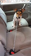 Strong Metal Chain Chew Proof Rear Seat Car Dog Restraint/Seatbelt