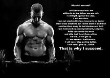 MOTIVATIONAL BODYBUILDING QUOTE POSTER / PRINT / PICTURE WHY DO I SUCCEED